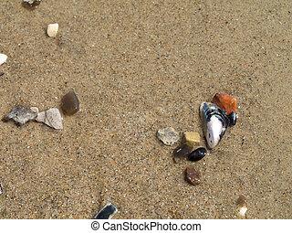 sea-sand