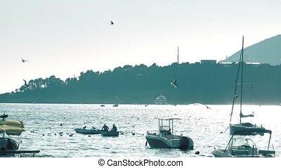 Sea scenery, slow motion video - Slow motion shot of sea...