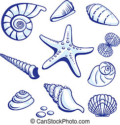 Sea Set From Starfishes and Cockleshells. Vector...