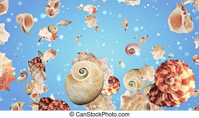 Shell Starfish Background Looped Video