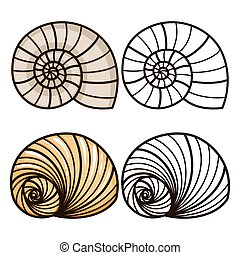 Cartoon and outline sea shells