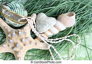 Sea shell heart