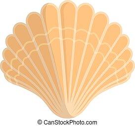 Sea shell.