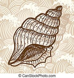 Sea shell. Original hand drawn illustration in vintage style