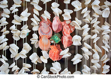 Sea shell product  background