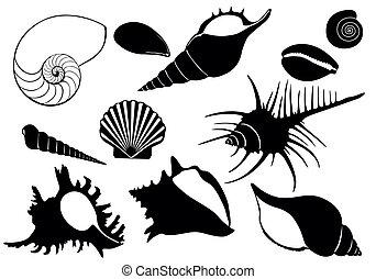 sea shell - Sea Set