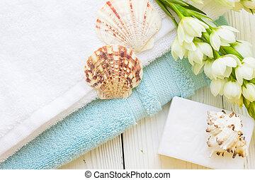 Sea shell spa concept