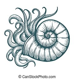 Sea Shell with Mollusc Tentacles - Hand drawn tentacles...