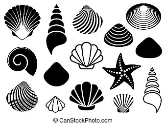 Sea shells and starfish - Set of different black sea shells ...