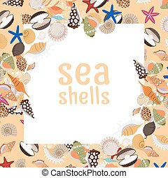 Sea shells background with square frame