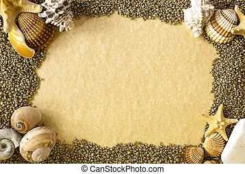 Sea shells frame
