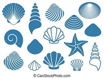 Sea shells - Set of various blue sea shells and starfish