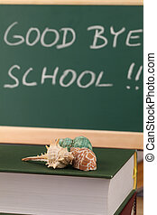 Good bye school