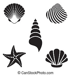 Sea shells - Set of various black sea shells and starfish