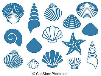 Sea shells - Set of various blue sea shells and starfish