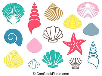 Sea shells - Set of various colorful sea shells and starfish...