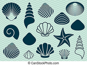 Sea shells - Set of various sea shells and starfish...