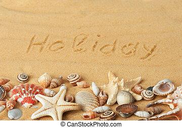 sea shells with sand