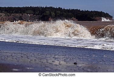 Sea Shore Water Wave