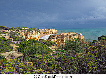 sea shore with beautiful sandstone cliffs green vagetation