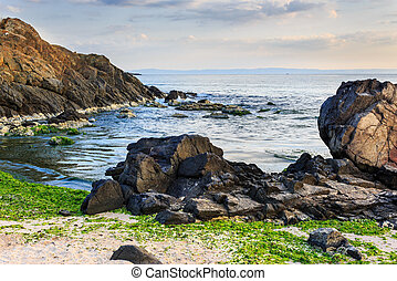sea shore with stones after the storm - number of stones and...