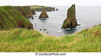 sea stacks and cliffs - viewpoint on duncansby head scotland...