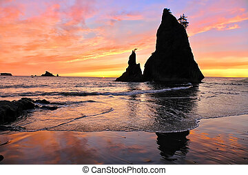 Sea Stacks at sunset. - Rialto Beach in Olympic National...