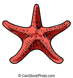 Sea star isolated on white. Sketch vector illustration