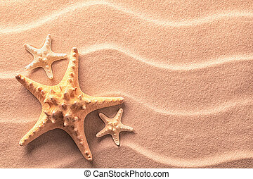 Sea star fish on an idylic tropical beach