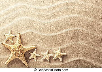 Sea star fish on an idyllic tropical beach