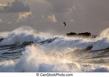 Sea storm with big breaking waves
