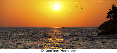 Sea sunset with silhouette of ship, seaguls and trees