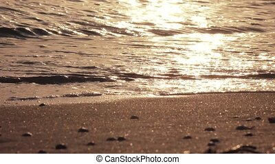 Sea surf at sunset - Surf the waves on a sandy beach at...