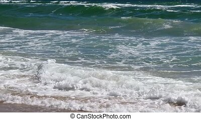 Sea Surf Waves.