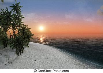 sea, tropical island, palm , sun