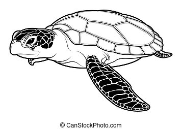 Sea turtle animal cartoon on white background.