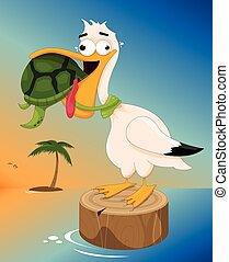 Sea Turtle Choking a Pelican