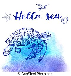 Sea turtle on a blue background