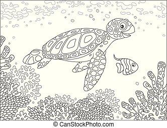 Sea turtle on a reef - Funny loggerhead and a small...