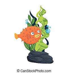 sea underwater life, blowfish animal and seaweed on white background