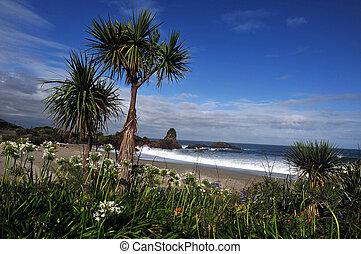 Sea View of South Island, New Zealand - Landscape view near...
