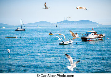 Sea view with seagulls and boats in Istanbul
