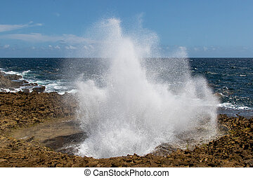 Sea water erupting from the blow hole