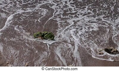 Sea wave on the sand