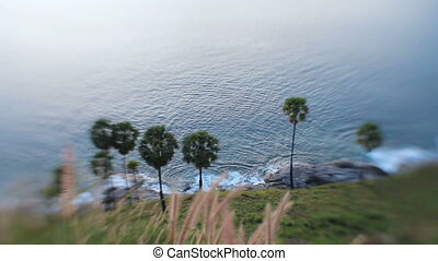Sea waves beating against the shore with growing palm trees. View from top of hill. Sunset on Phuket island, Thailand.
