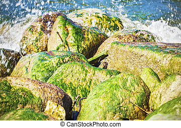 Sea waves beating on the rocks