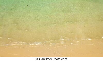 Sea waves of transparent water on sandy beach drone view. Top view clear ocean waves splashing on sandy shore. Empty and wild beach.