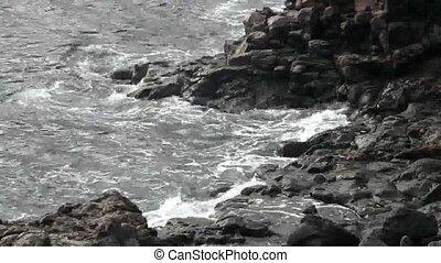 Sea waves on rocks