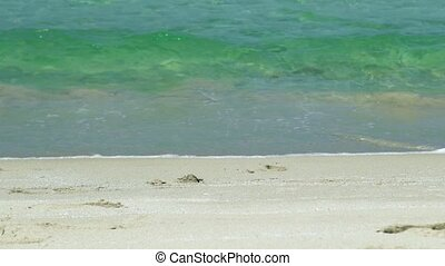 Sea waves on sandy beach. Slow motion. Sea waves of transparent water on paradise beach close up.