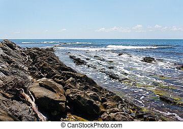 Sea waves on the rocky beach against clear sky